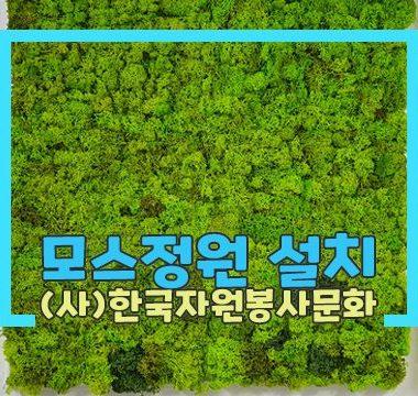 섬네일-모스정원1.jpg