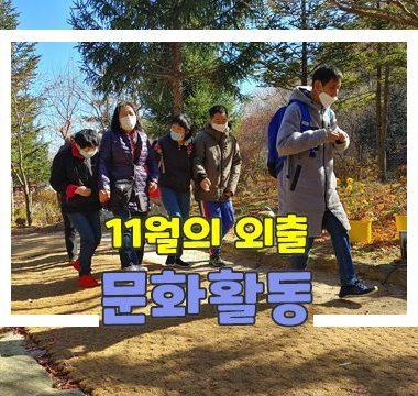 섬네일-11월 문화활동.jpg
